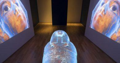 mostra-museo-egizio